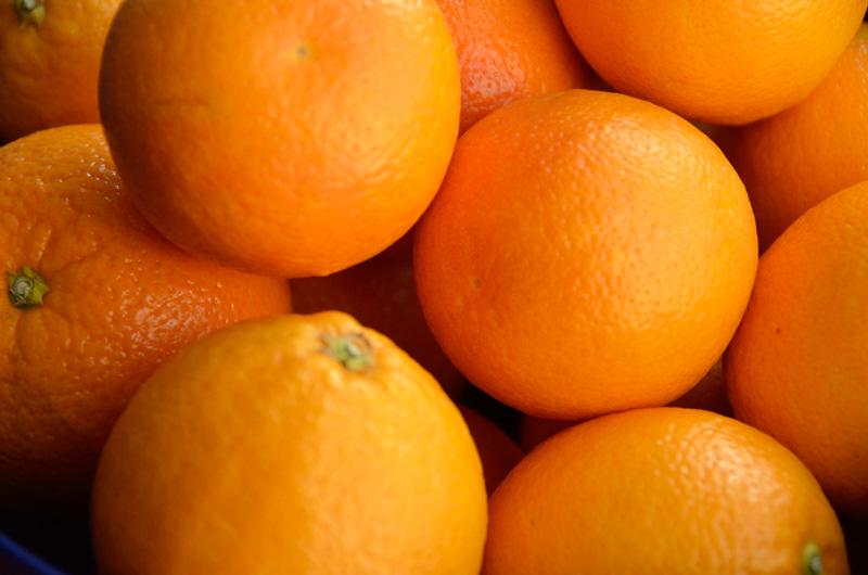 OrangeMarmalade03