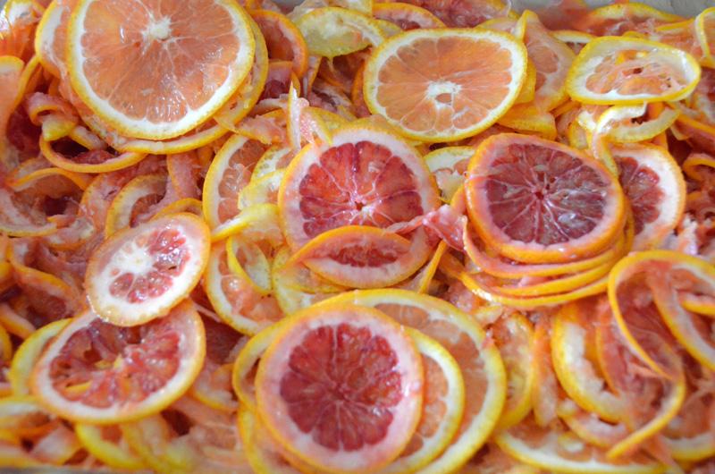 OrangeMarmalade07_Web